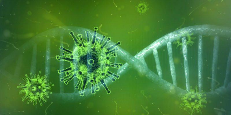 Het coronavirus: gezondheid en veiligheid staan voorop